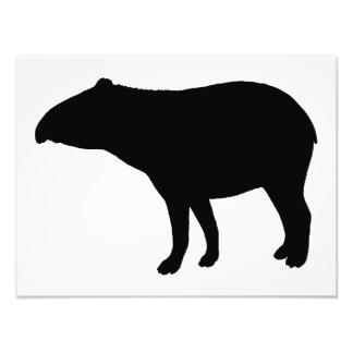Tapir silhouette photo