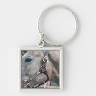 Tapit-Fashion Cat $750K Silver-Colored Square Key Ring