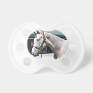 Tapit-Rote Fasig Tipton Baby Pacifiers