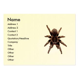Tarantula Pack Of Chubby Business Cards