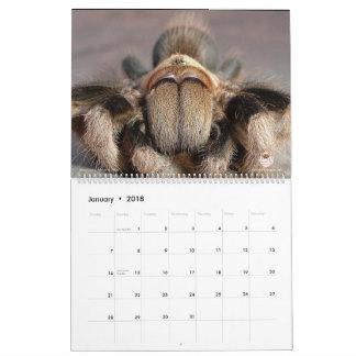 Tarantula Calendar for 2018
