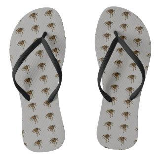 Tarantula flip-flops thongs