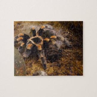 Tarantula Jigsaw Puzzle