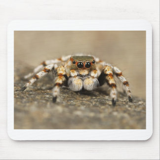 Tarantula Jumping Bird Spider awesome accessories Mouse Pad