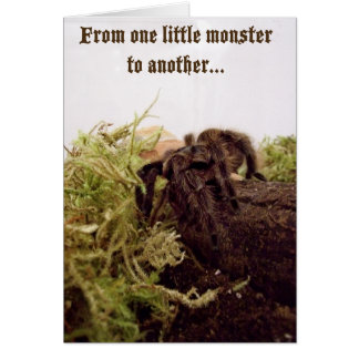 Tarantula Little Monster Birthday Card