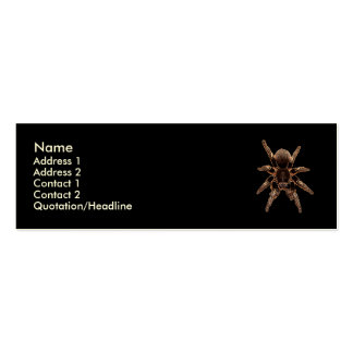 Tarantula Spider Double-Sided Mini Business Cards (Pack Of 20)