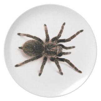 Tarantula Spider Dinner Plate. Plate