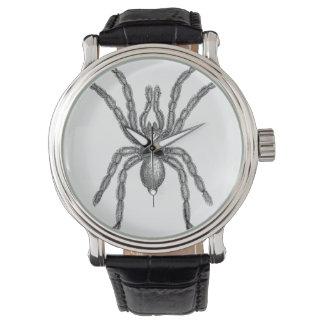 Tarantula Watch