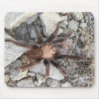 Tarantulas are scary mouse pad