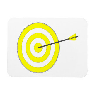 Target with arrow magnet