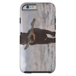tarifa, cadiz, spain tough iPhone 6 case