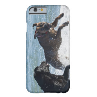 tarifa spain barely there iPhone 6 case