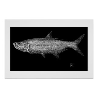 Tarpon Scratch art Poster