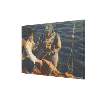 Tarpon Springs, FL - View of Diver Ascending Boa Canvas Print
