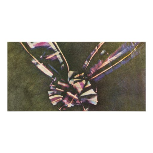 Tartan Ribbon First Known Color Photograph Custom Photo Card