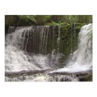 TASMANIA AUSTRALIA WATERFALLS  NATURE RIVERS POSTCARD