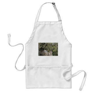 TASMANIA WILDERNESS TARKINE NATIONAL PARK STANDARD APRON