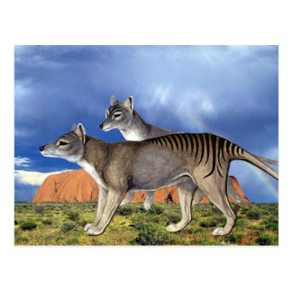 Tasmanian Tiger Postcards