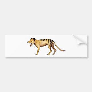 Tasmanian tiger, Thylacine Bumper Sticker