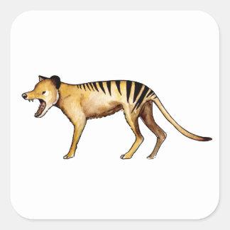 Tasmanian tiger, Thylacine Square Sticker