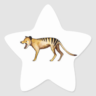 Tasmanian tiger, Thylacine Star Sticker