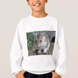 Tasmania's Quoll Sweatshirt