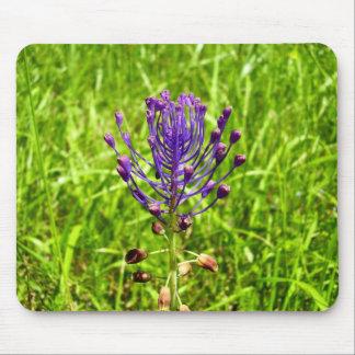 Tassel-Hyacinth Mouse Mat
