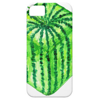 Tasty Watermelon Art2 Barely There iPhone 5 Case