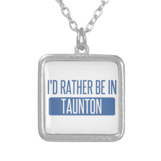 Taunton Silver Plated Necklace