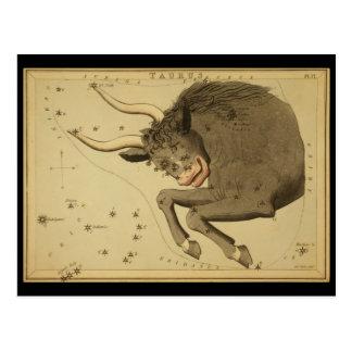 Taurus Postcard