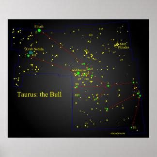 Taurus the Bull constellation Poster