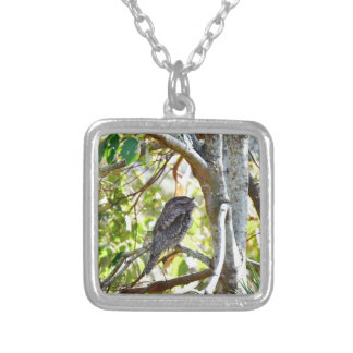 TAWNY FOGMOUTH RURAL QUEENSLAND AUSTRALIA SILVER PLATED NECKLACE