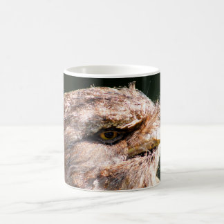 Tawny Frogmouth Bird Wildlife Photograph Coffee Mug