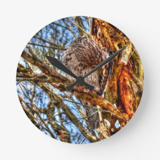 TAWNY FROGMOUTH FLUFFING FEATHERS WITH ART EFFECTS WALL CLOCKS
