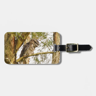 TAWNY FROGMOUTH IN TREE QUEENSALND AUSTRALIA LUGGAGE TAG