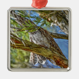 TAWNY FROGMOUTH OWL AUSTRALIA ART EFFECTS Silver-Colored SQUARE DECORATION