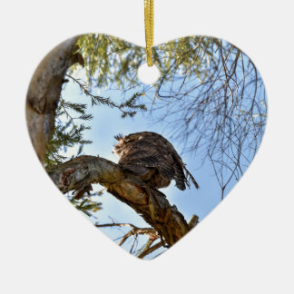 TAWNY FROGMOUTH OWL RURAL QUEENSLAND AUSTRALIA CERAMIC HEART DECORATION