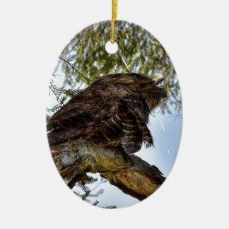 TAWNY FROGMOUTH OWL RURAL QUEENSLAND AUSTRALIA CERAMIC OVAL DECORATION