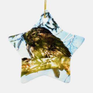 TAWNY FROGMOUTH OWL RURAL QUEENSLAND AUSTRALIA CERAMIC STAR DECORATION