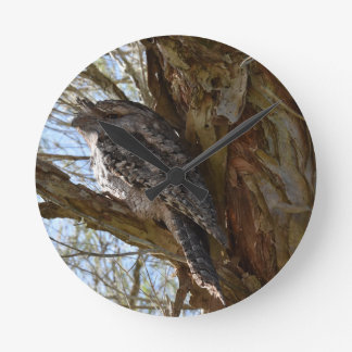 TAWNY FROGMOUTH OWL RURAL QUEENSLAND AUSTRALIA WALLCLOCKS