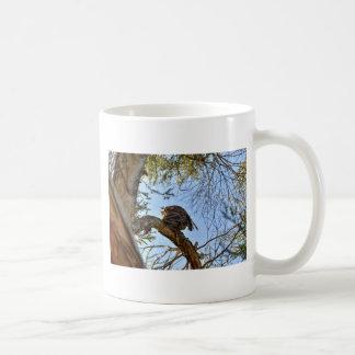 TAWNY FROGMOUTH OWL RURAL QUEENSLAND AUSTRALIA COFFEE MUG