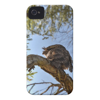 TAWNY FROGMOUTH OWL RURAL QUEENSLAND AUSTRALIA iPhone 4 Case-Mate CASES