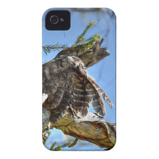 TAWNY FROGMOUTH OWL RURAL QUEENSLAND AUSTRALIA iPhone 4 CASES