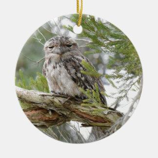 TAWNY FROGMOUTH OWL RURAL QUEENSLAND AUSTRALIA ROUND CERAMIC DECORATION