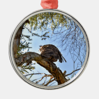 TAWNY FROGMOUTH OWL RURAL QUEENSLAND AUSTRALIA Silver-Colored ROUND DECORATION