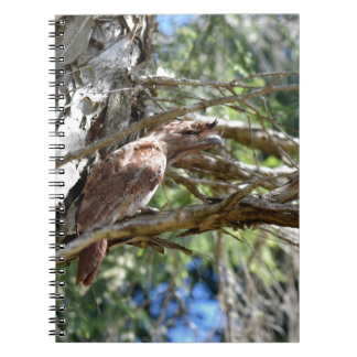 TAWNY FROGMOUTH OWL RURAL QUEENSLAND AUSTRALIA SPIRAL NOTEBOOK