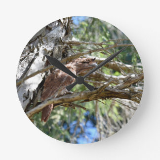 TAWNY FROGMOUTH OWL RURAL QUEENSLAND AUSTRALIA WALL CLOCKS