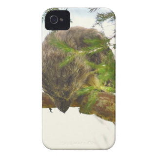 TAWNY FROGMOUTH QUEENSLAND AUSTRALIA iPhone 4 COVER