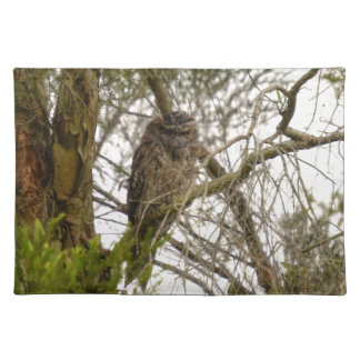 TAWNY FROGMOUTH QUEENSLAND AUSTRALIA PLACEMAT