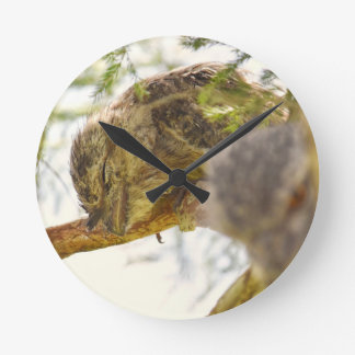 TAWNY FROGMOUTH QUEENSLAND AUSTRALIA WALL CLOCKS